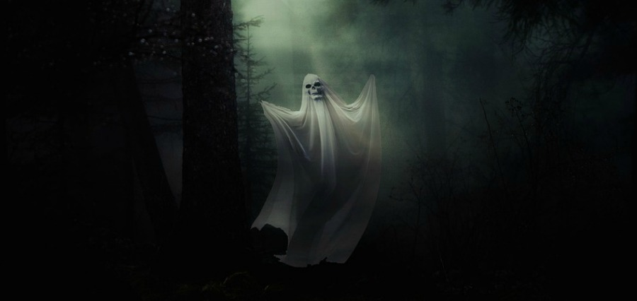 Halloween Ghost in the Forest